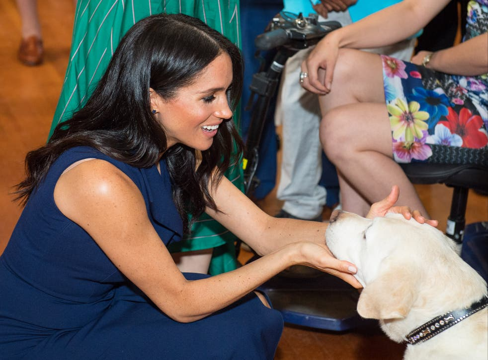 <p>The Duchess of Sussex pats a guide dog in Australia</p>