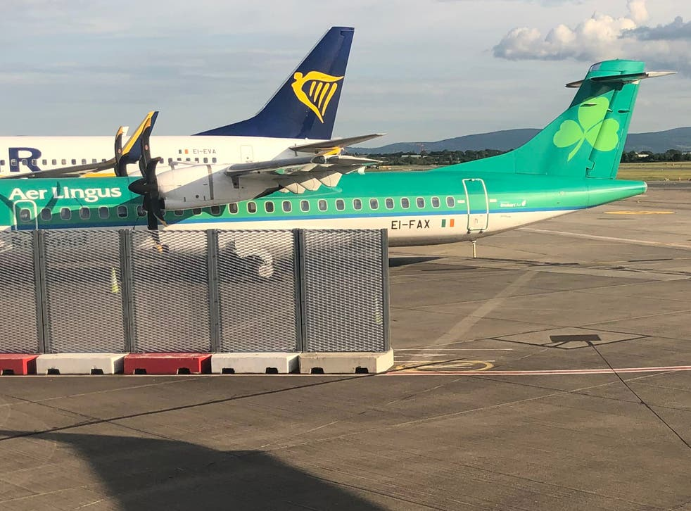 <p>Big rivals: aircraft in the colours of Aer Lingus and Ryanair at Dublin airport</p>