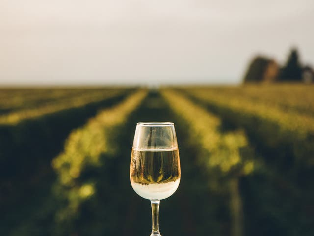 <p>A rare dessert wine produced from the juice of naturally frozen grapes that have been picked in the middle of a cold Canadian winter</p>