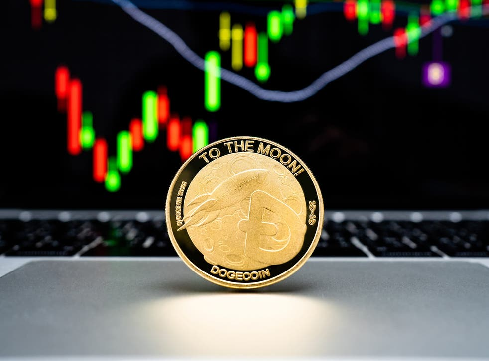 <p>The price of dogecoin peaked in May but fell dramatically, losing around 75 per cent of its value by 22 June, 2021</p>