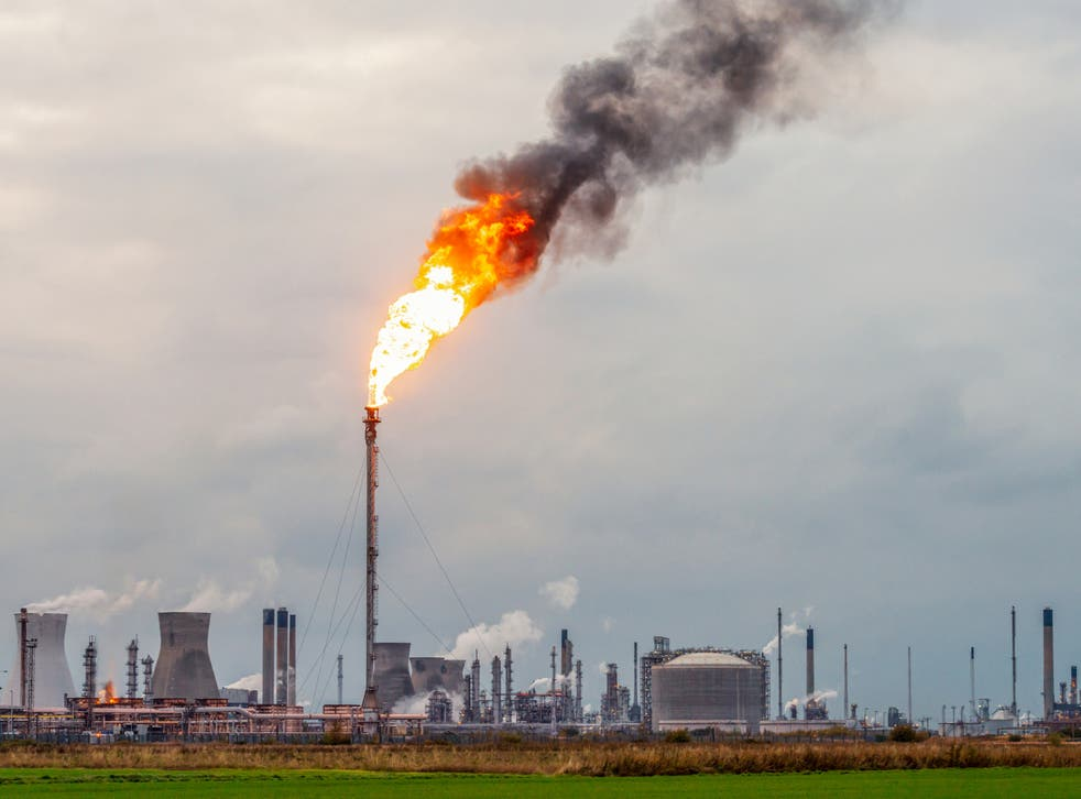 <p>Panel will focus on global approaches to cutting emissions, advancing carbon capture technology and restoring nature</p>