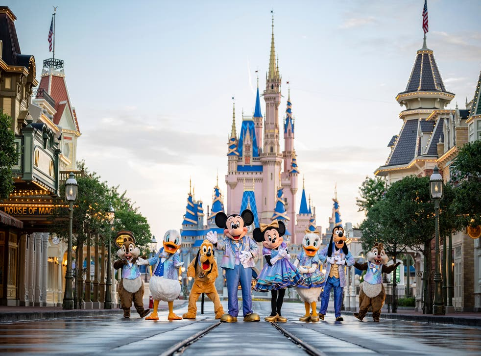 <p>Disney had removed nearly 250 alligators since the death of toddler in 2016.</p>