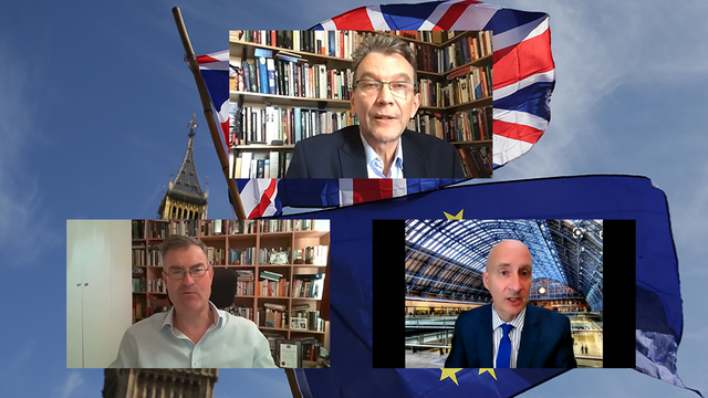 <p>The Independent's EU referendum anniversary event held on Zoom </p>