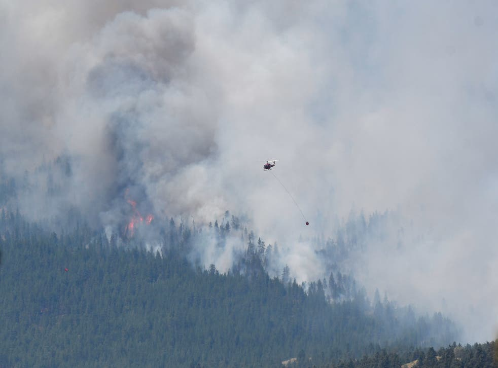 <p>A wildfire burns on 1 July, 2021, outside the British Columbia town of Lytton, which has been gutted by flames. </p>