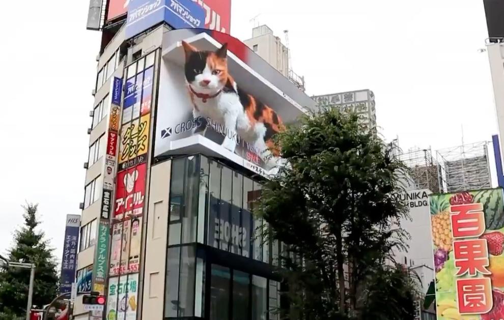 Giant 3D Cat on Japanese Billboard