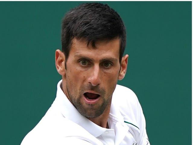<p>Roger Federer and Novak Djokovic</p>