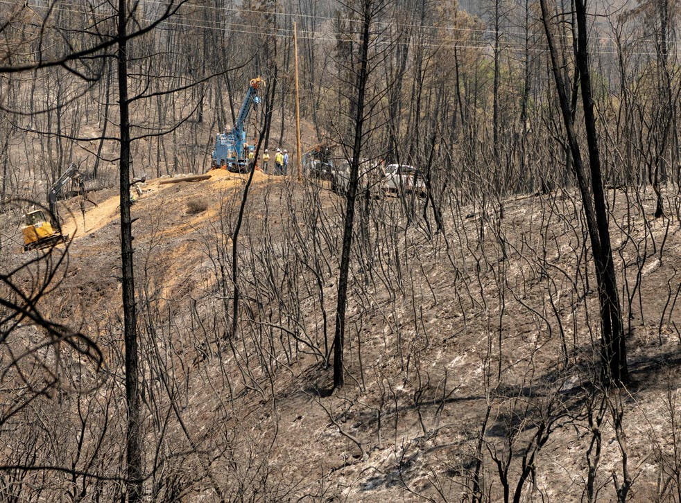 <p>California is already experiencing an extreme drought and dry conditions</p>