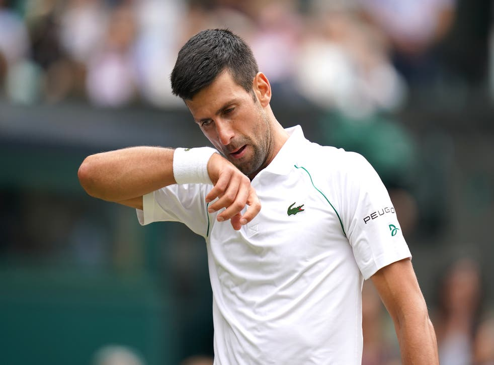 Novak Djokovic is closing in on a record-equalling 20th grand slam title