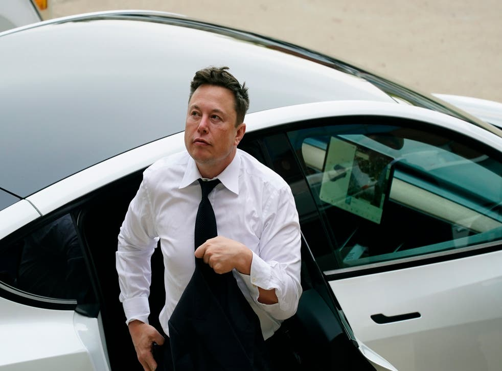 <p>Musk has 'star power' concedes Carson Block </p>