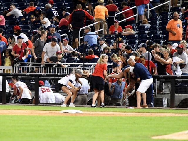 <p>A shooting outside the Washington Nationals stadium on Saturday</p>