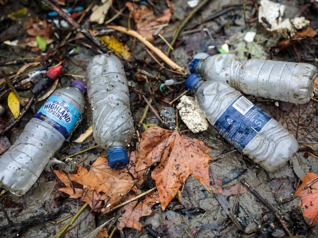 <p>Plastic waste discarded in rivers is entering the food chain</p>