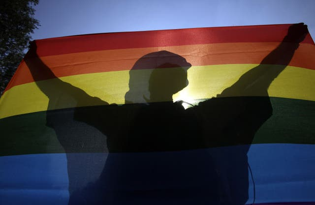 <p>A  participant during a Pride parade in downtown Budapest in 2012</p>