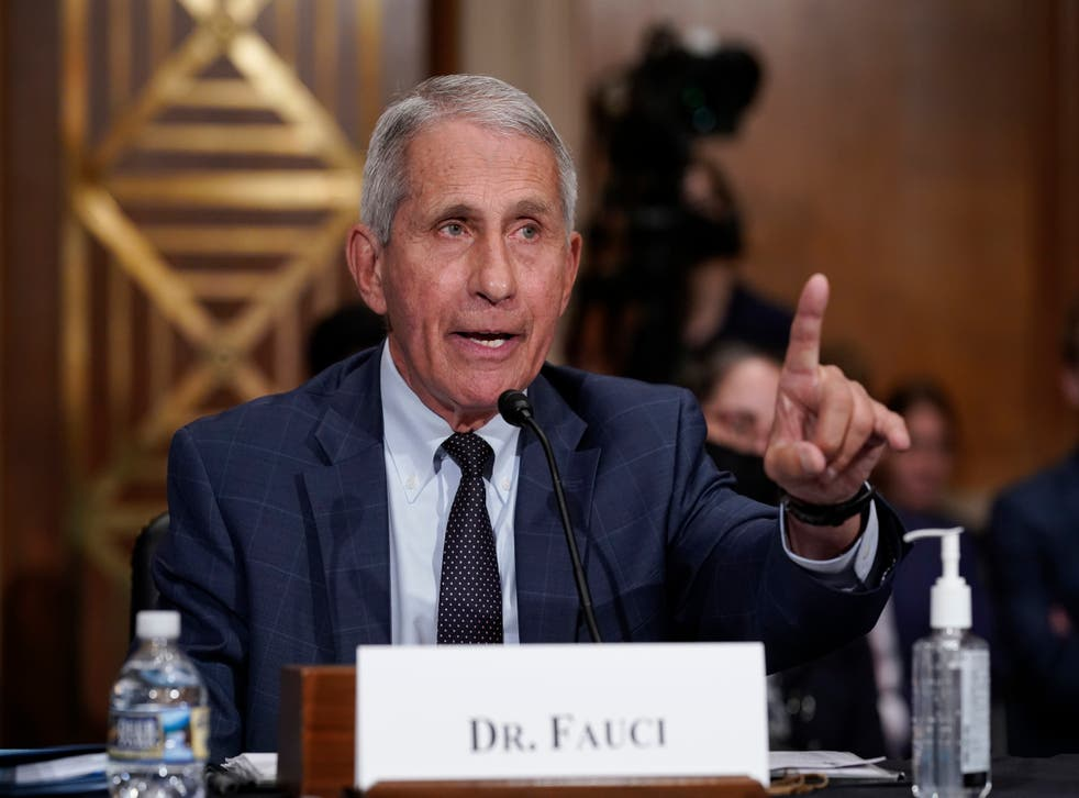 <p>Dr Anthony Fauci speaks at a congressional hearing.</p>