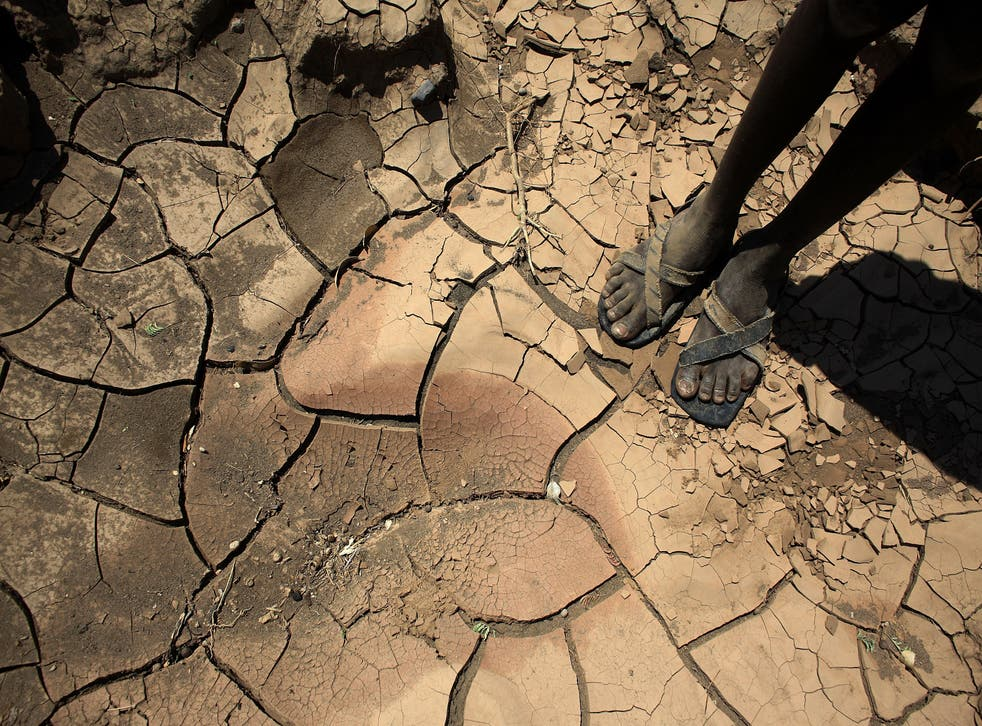 <p>A boy from a remote tribe stands on a dried-up river bed in Kenya made worse by climate change</p>