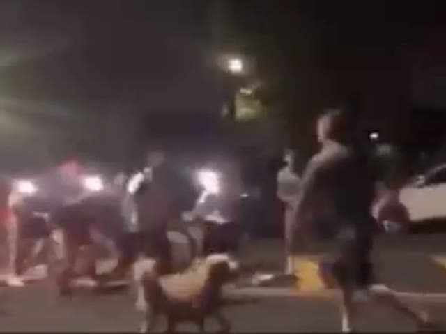<p>A group of teenagers confronts an off-duty New York firefighter who is out walking his dog in Queens. The teens allegedly attacked the firefighter before being scared off by an ambulance. </p>