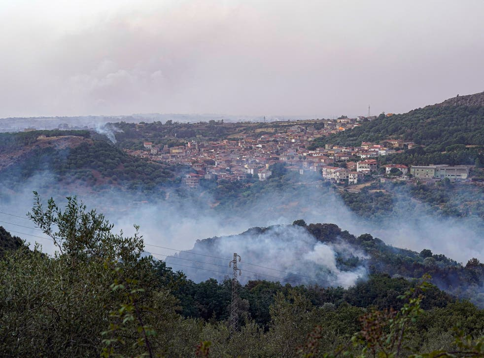 <p>Animals have been killed and homes and businesses have been destroyed in Sardinia's wildfires</p>