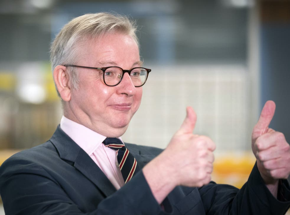 <p>Cabinet Office minister Michael Gove</p>