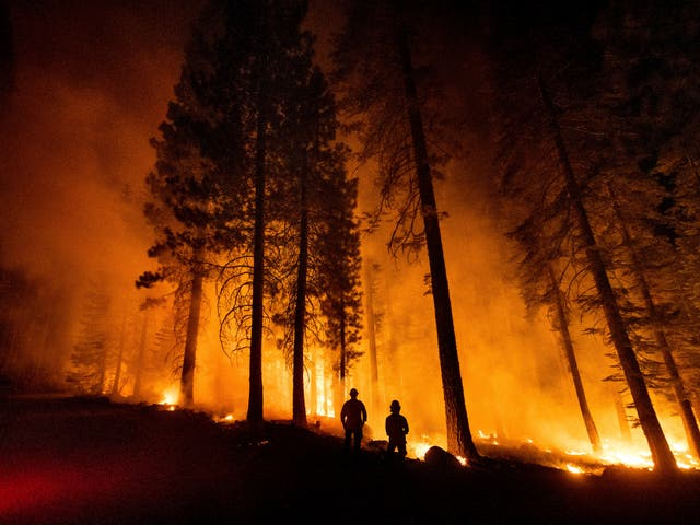 <p>Cal Fire Capts. Derek Leong, right, and Tristan Gale monitor a firing operation, where crews set a ground fire to stop a wildfire from spreading, while battling the Dixie Fire in Lassen National Forest, California on 26 July 2021</p>
