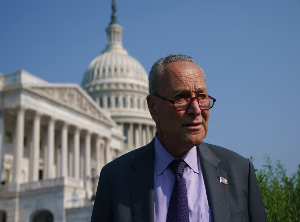 <p>Senate Majority Leader Chuck Schumer in front of the Capitol.</p>