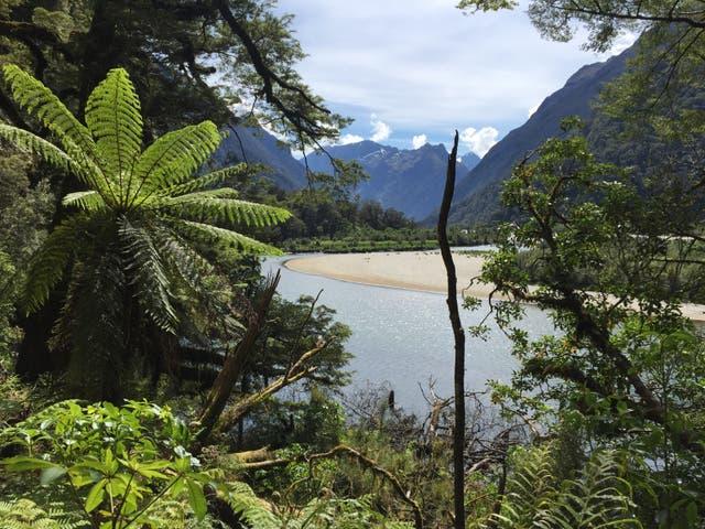 El prístino Milford Sound en el sur de Nueva Zelanda es uno de los principales destinos turísticos del país.