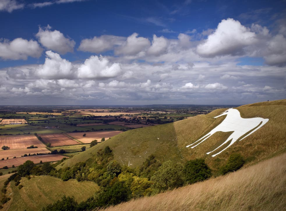<p>Westbury is famed for its White Horse</p>