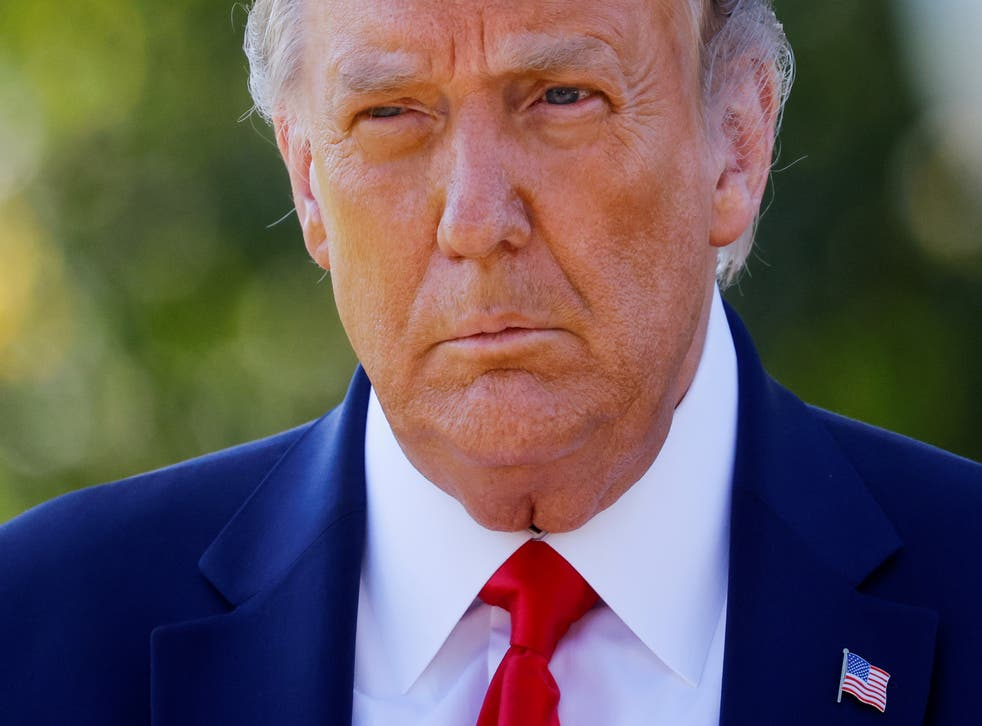 <p>File image: Then-US President Donald Trump approaches reporters as he departs on campaign travel to Minnesota from the South Lawn at the White House in Washington, US, 30 September, 2020</p>