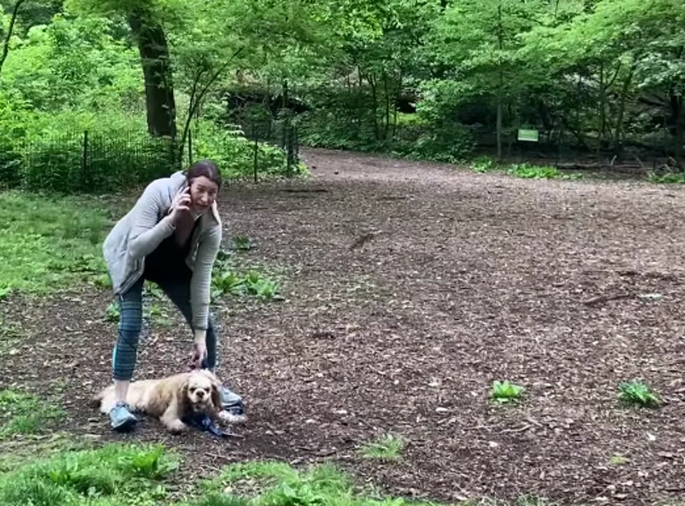 <p>Video of the viral incident in Central Park, New York, in which Amy Cooper (pictured) phoned 911 on a Black bird watcher</p>