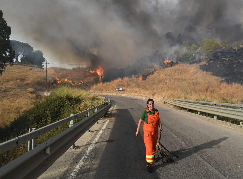 <p>Extreme heat on the Italian island of Sicily has fanned the flames of wildfires </p>