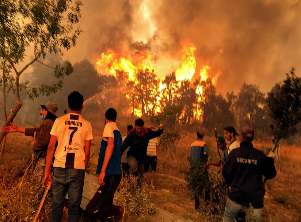 <p>Villagers attempt to put out a wildfire in Algeria a month ago </p>