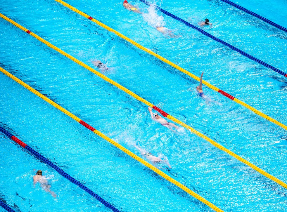 <p>The Paralympic swimming codes are decided by a combination of stroke and impairment classification  </p>