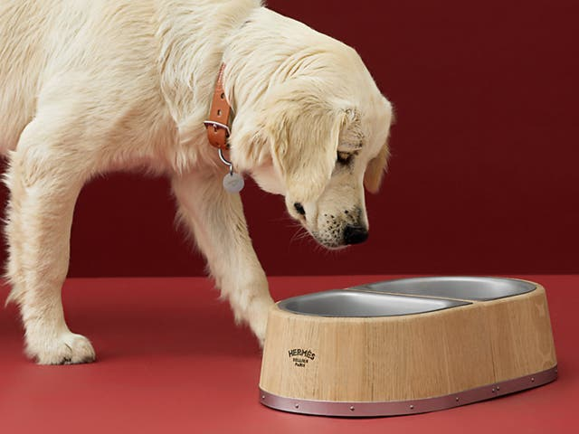 <p>Hermès dog bowl</p>