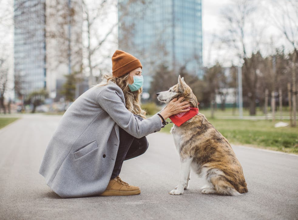 <p>Woman during pandemic walk with her dog</p>