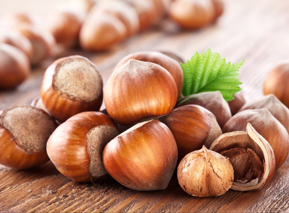 <p>Could hazelnuts provide us with new low-carbon biofuels?</p>