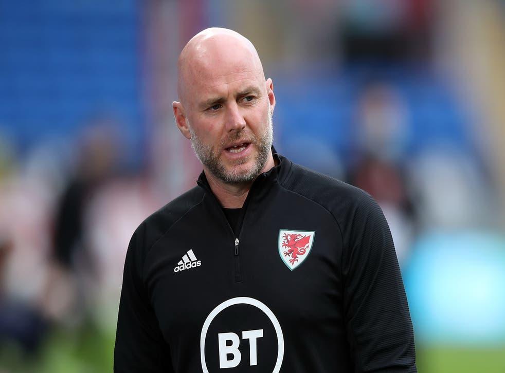 <p>Wales boss Robert Page</p>