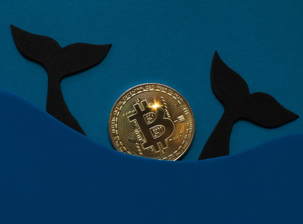<p>So-called bitcoin whales are once again stockpiling the cryptocurrency in expectation of price gains</p>