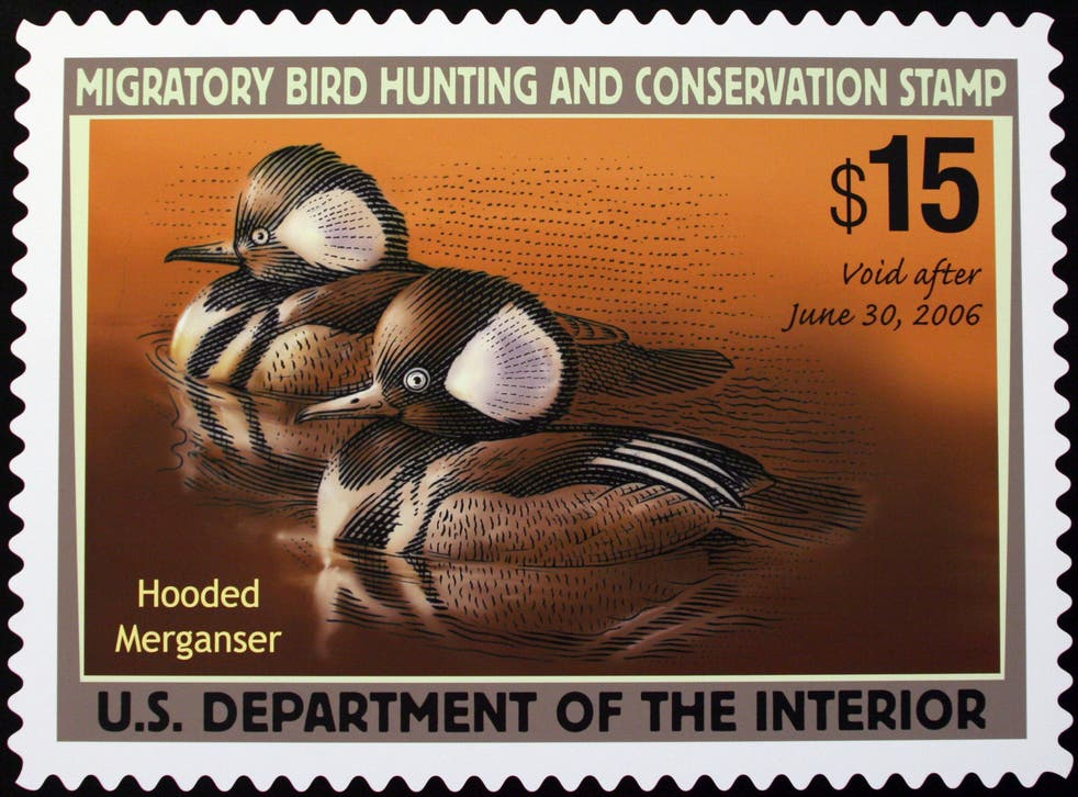 Duck Stamp-Hunting Rule