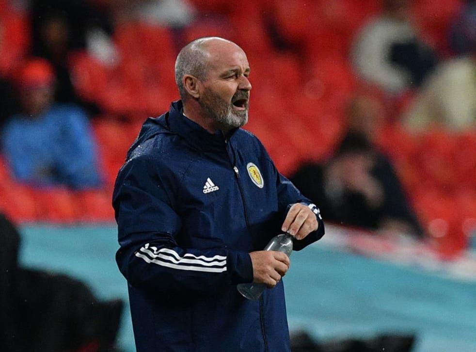 <p>Scotland head coach Steve Clarke </p>