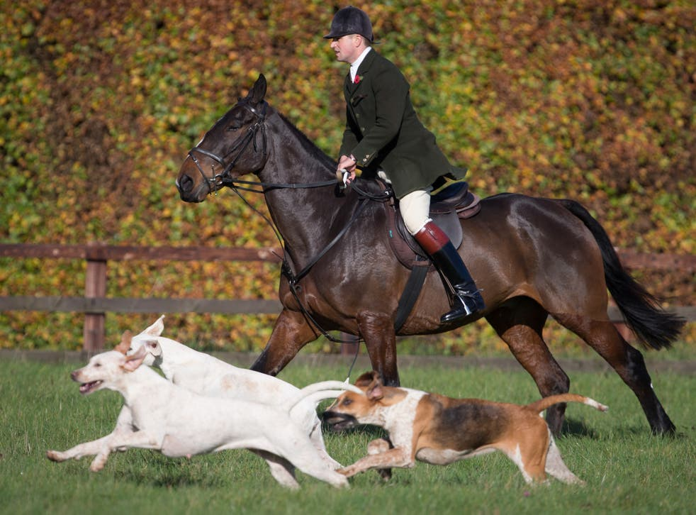 <p>'Trail-hunting' is a cover for foxhunting, according to opponents </p>