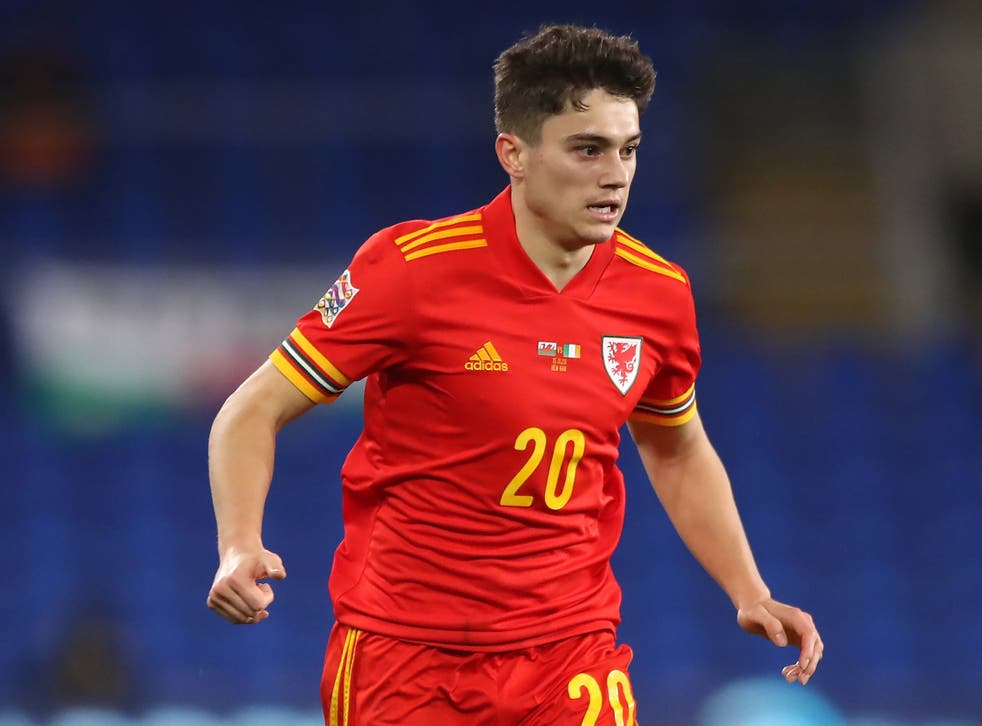<p>Daniel James has World Cup qualification in his sights (Nick Potts/PA)</p>