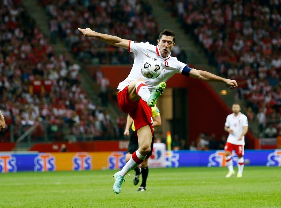 <p>Robert Lewandowski in action against England</p>