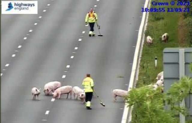 <p>CCTV images show highway traffic officers – armed with brooms – attending the scene on the motorway</p>