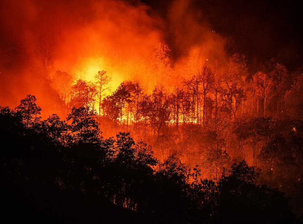 <p>Scientists increasingly attribute extreme weather events to manmade climate change</p>