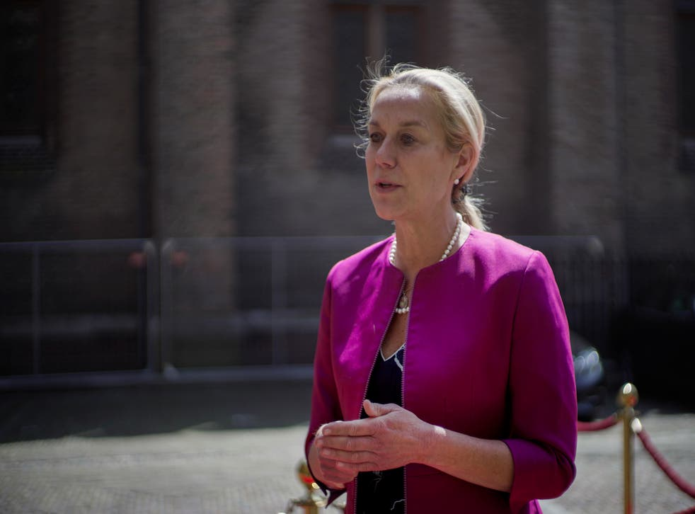 Netherlands Foreign Minister Quits