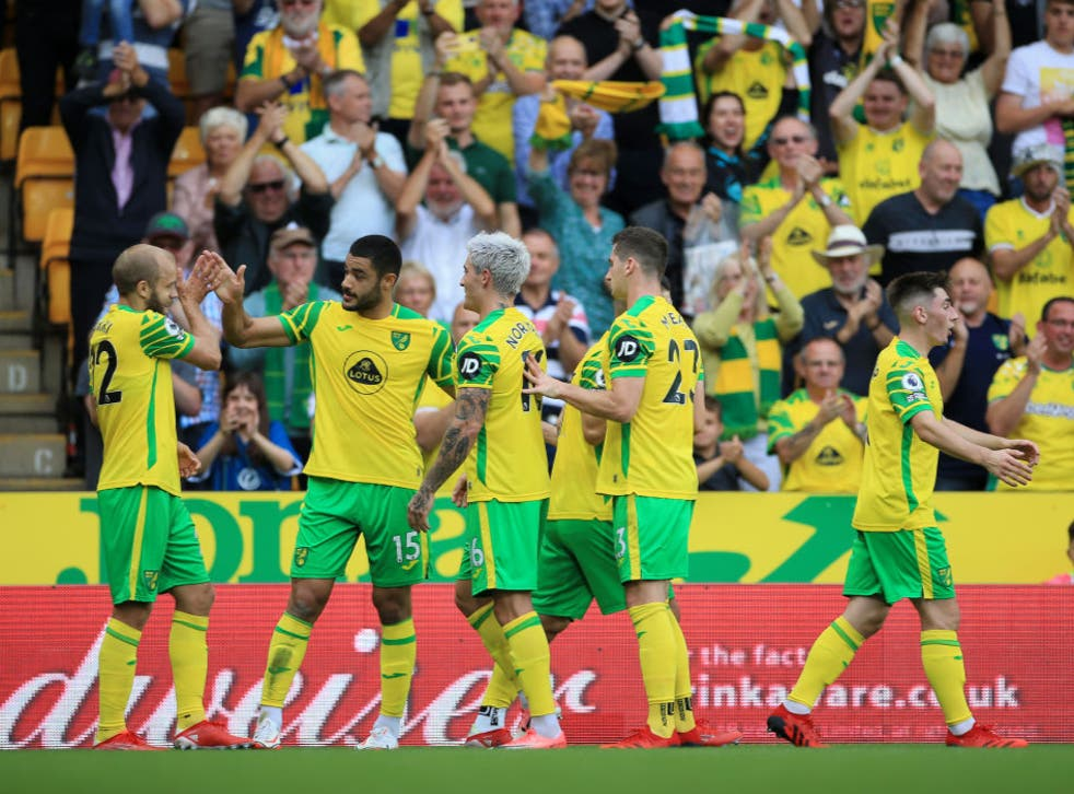 <p>Norwich are rock bottom of the Premier League table and still in search of their first points</p>