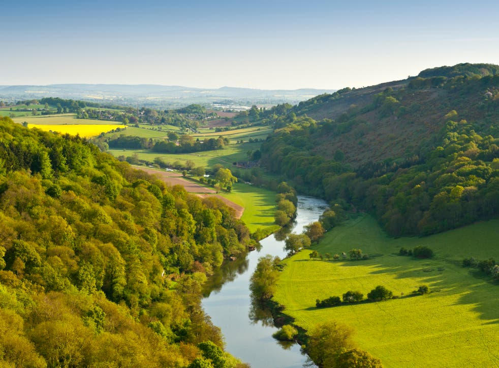<p>Large areas of new woodlands are set to be planted from Devon to Cumbria as part of the government's 'Woodlands for Water' project </p>