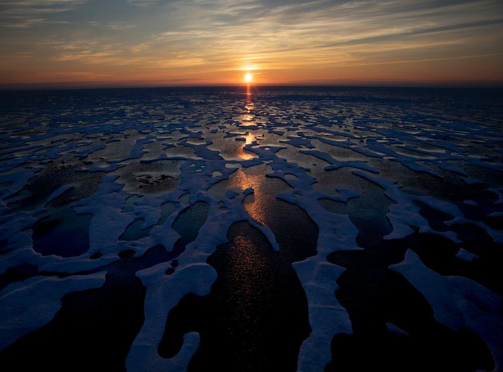 Biden Arctic
