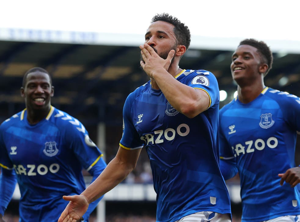 <p>Andros Townsend celebrates scoring Everton's opener against Norwich</p>