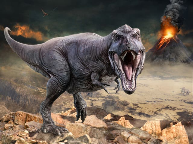 <p>Volcanoes' climate-altering capabilities helped propel dinosaurs to world domination, scientists say</p>
