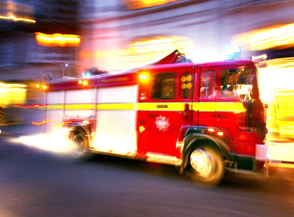 <p>Firefighters rushed to rescue Ronnie the iguana </p>