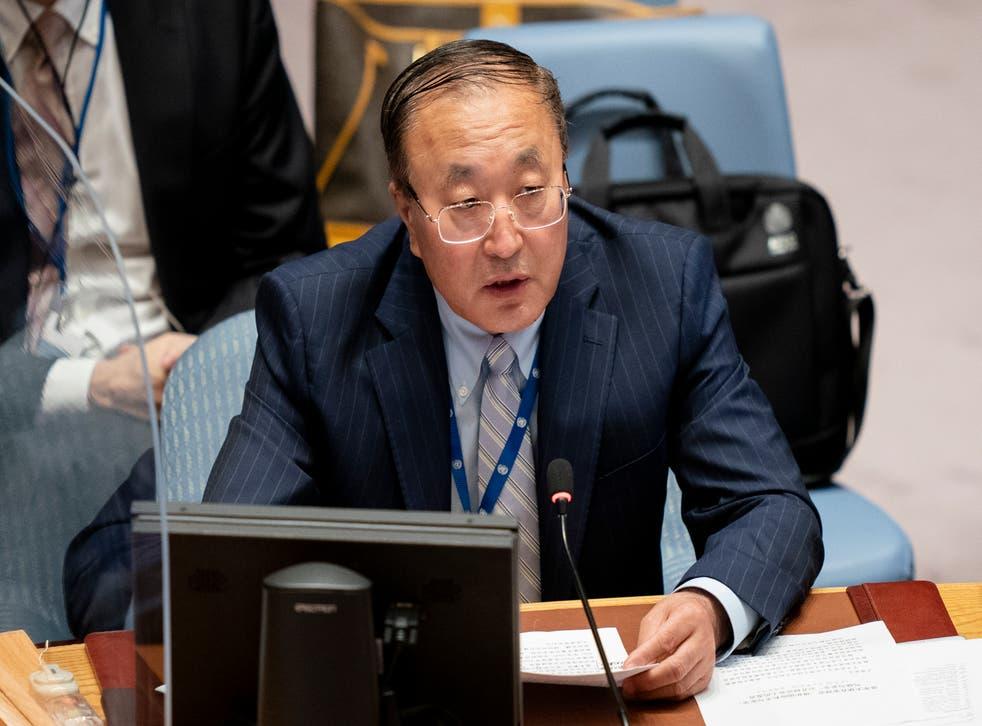 UN General Assembly Security Council
